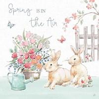 Springtime VI Fine Art Print