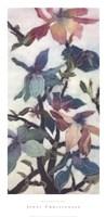 Magnolias XII Fine Art Print