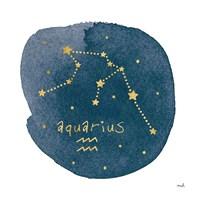 Horoscope Aquarius Fine Art Print