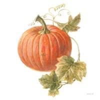 Floursack Autumn VIII on White Fine Art Print