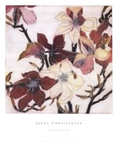 Magnolias XIX Fine Art Print