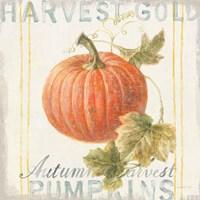 Floursack Autumn VIII Framed Print