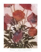 "Poppies by Jenni Christensen - 22"" x 28"""