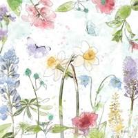 Spring Splash II Fine Art Print