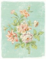 Cottage Roses IX Bright Fine Art Print