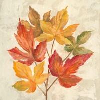 November Leaves IV Fine Art Print