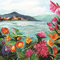 St. Kitts Fine Art Print