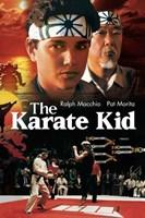 Karate Kid Wall Poster