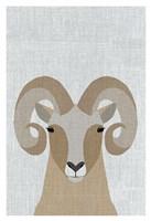 Bighorn Sheep Fine Art Print
