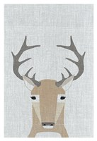 Whitetail Deer Fine Art Print