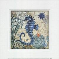 Monterey Bay Seahorse Fine Art Print