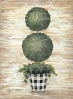 Gingham Topiary Spheres Fine Art Print