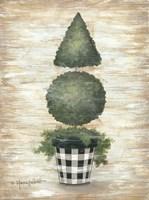 Gingham Topiary Cone Fine Art Print