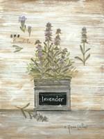 Lavender Botanical Fine Art Print