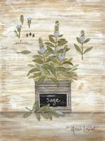 Sage Botanical Framed Print