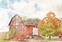 Autumn Maple by the Barn Fine Art Print