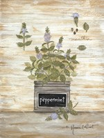 Peppermint Botanical Framed Print