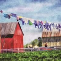 Clothesline Farm Fine Art Print