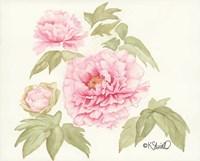 Garden Blush Fine Art Print