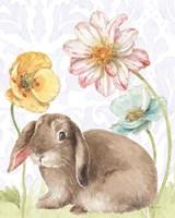 Spring Softies Bunnies III Purple Framed Print