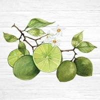 Citrus Garden VII Shiplap Fine Art Print