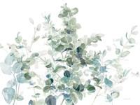 Eucalyptus I Cool Fine Art Print
