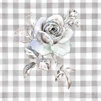 Sketchbook Garden IX Checker Fine Art Print