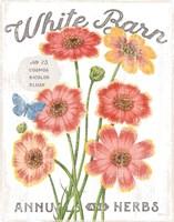 White Barn Flowers III Fine Art Print