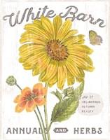 White Barn Flowers I Fine Art Print