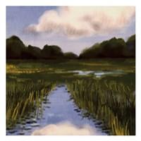 Marsh Wonder Fine Art Print