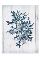 Coral White Wood Third Framed Print