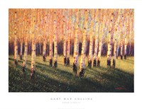 Aspen Light (Right) Fine Art Print