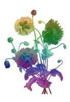 Color Bloom Fine Art Print