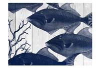 Blue Fishe Fine Art Print