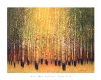 Aspen Glow Fine Art Print