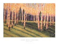 Aspen Light (Left) Fine Art Print