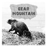 Bear Mountain Fine Art Print