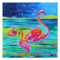 Duo Flamingos Fine Art Print