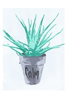 Calm Pot Fine Art Print