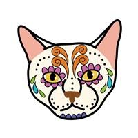 Sugar Kitty 2 Fine Art Print
