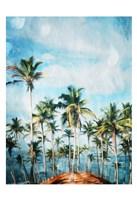 Beach Palm Out Fine Art Print