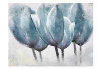 Three Tulip Blue Fine Art Print