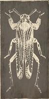 Bug Life Four Fine Art Print