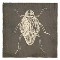 Bug Life One Fine Art Print
