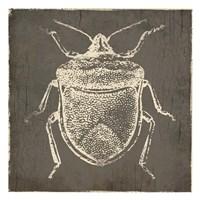 Bug Life Two Fine Art Print