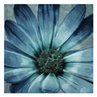 Uplifting Blue Flower Mate Fine Art Print