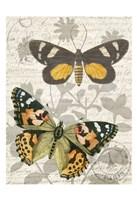 Butterfly Travel 2 Fine Art Print