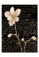 Magnolia Gold 1 Fine Art Print