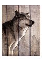 Into the Woods 2 Fine Art Print