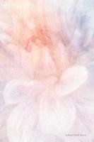 Soft Dahlia Pastel Peach Lilac Fine Art Print